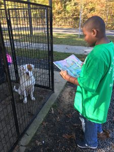 reading-to-dogs-3
