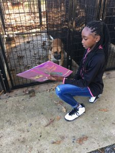 reading-to-dogs-4