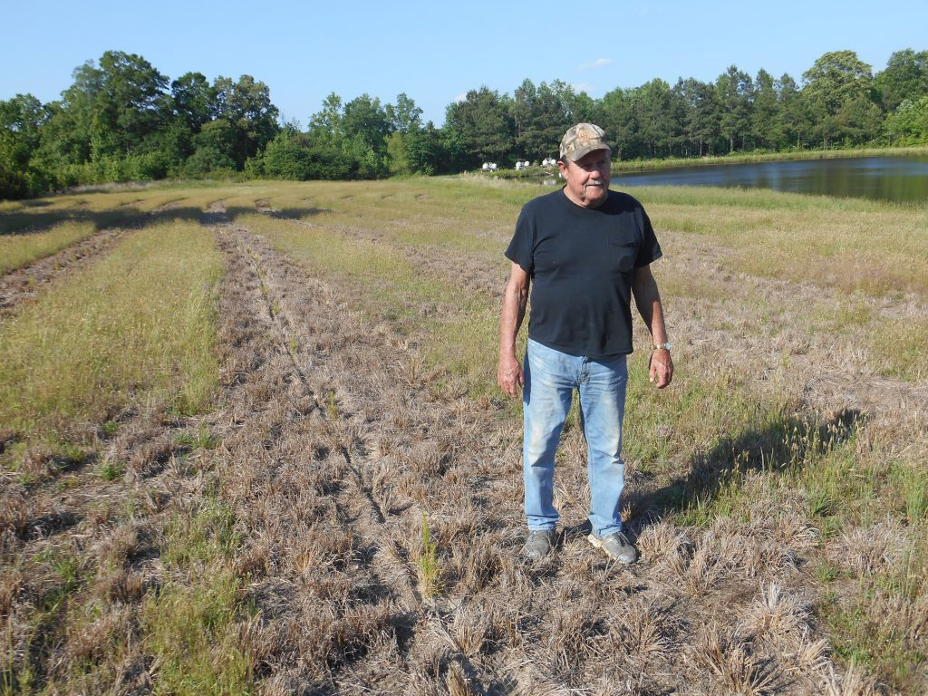 Local farmer, David Crews, of Highway 15 South. Crews converted 12 acres of highly erodible cropland to loblolly pines earlier this year with technical and cost-share assistance through the Granville Soil and Water District and the N.C. Forest Service.